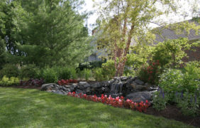 backyard-landscape-photo (2)