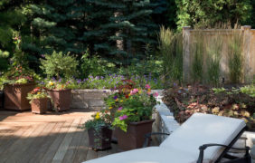 backyard-landscape-photo (62)