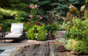 backyard-landscape-photo (84)