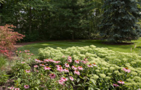 backyard-landscape-photo (90)