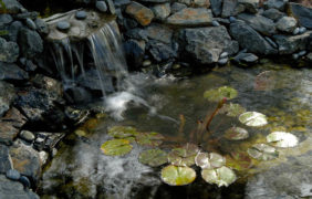 landscaping-fire-water-features (19)